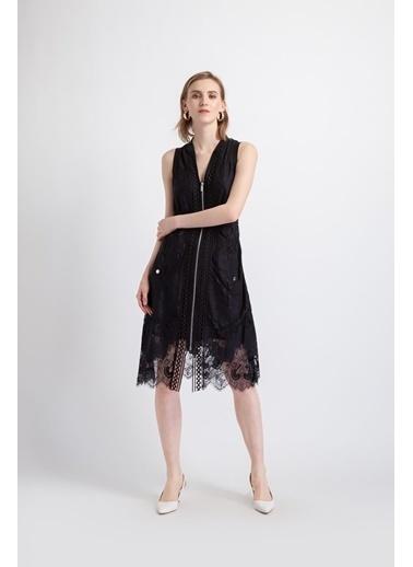 Fracomina Elbise Siyah